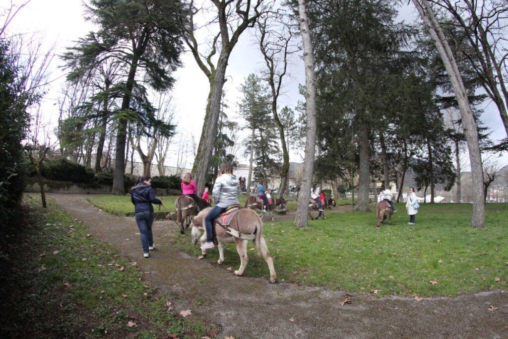 passeggiate con gli asini per bambini
